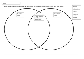 Animal and Plant Cells Worksheets by Sabir1 - Teaching Resources - Tes