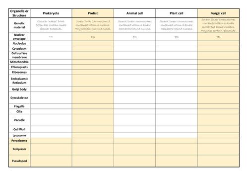 Revision / Homework Ideas ?