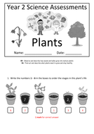 Y2---Plants-(Answers).docx