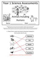 Y1---Animals-Inc-Humans-(Answers).docx