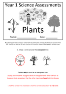Y1---Plants-(Answers).docx