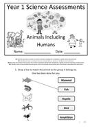 Y1---Animals-Inc-Humans.docx