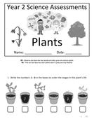Y2---Plants.docx