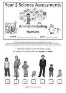 Y2---Animals-Inc-Humans-(Answers).docx
