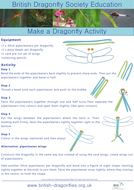Make a Dragonfly