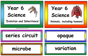 Year 1 - 6 Science Vocabulary Pack