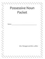 Possessive Pronoun differentiated  worksheets