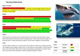 LA-pupils-shark-DART-with-highlights.docx