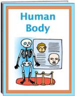 Human Body - Literacy and Information eWorkbook