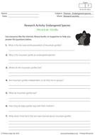 Research Activity - Mountain Gorillas