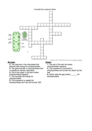 Photosynthesis revision crossword - for AFL, lesson plenary, lesson starter or revision