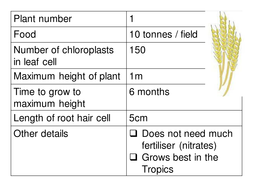 Photosynthesis lesson - develop higher level thinking - deciding which plant to feed the world