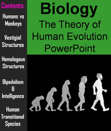 Human Evolution PowerPoint