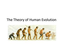 Human-Evolution.ppt