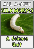 All About Silkworms