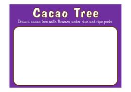 draw-a-CACAO-TREE.pdf