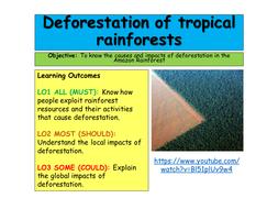 Deforestation-of-tropical-rainforests.pptx