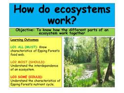 Ecosystems - Tropical Rainforest AQA A 2016