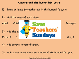 Human life cycle ks2 lesson plan explanation text and worksheet by human life cycle ks2 lesson plan explanation text and worksheet ibookread