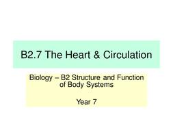B2.7-The-Heart---Circulation---LP.pptx