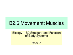 B2.6-Movement--Muscles---LP.pptx