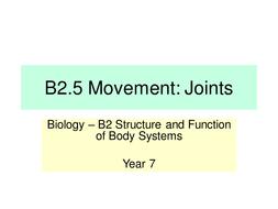 B2.5-Movement--Joints---LP.pptx