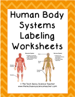 Body-Systems-Labeling.pdf