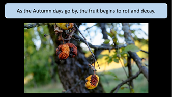 preview-images-autumn-days-powerpoint-12.pdf