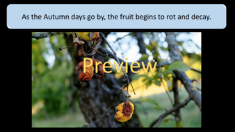 preview-images-autumn-days-powerpoint-09.png