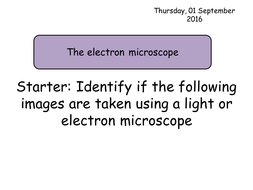Section 2. Cells. 3.2 The Electron Microscope Year 12 Biology