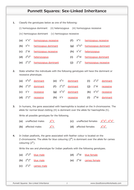Punnett Squares Sex Linked Inheritance By Goodscienceworksheets