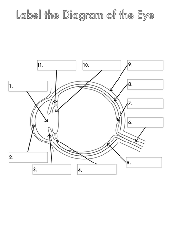 label the eye diagram worksheet label the eye diagram answers