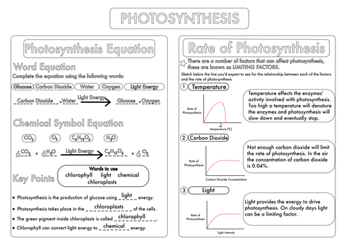 Worksheets Photosynthesis Worksheet Middle School gcse photosynthesis topic worksheets by beckystoke teaching resources tes