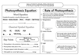 GCSE Biology: Photosynthesis Worksheet Pack by beckystoke - Teaching ...