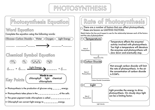 {GCSE Photosynthesis Topic Worksheets by beckystoke Teaching – Photosynthesis Worksheet Pdf