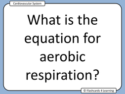 GCSE PE: Cardiovascular System - Questions & Answers