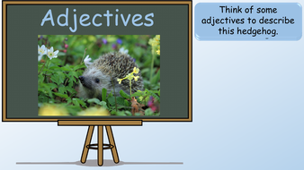 preview-images-adjectives-powerpoint-lesson-10.pdf