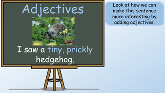 preview-images-adjectives-powerpoint-lesson-11.pdf