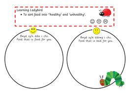 Sorting Food Bwyd Welsh Teaching Resources