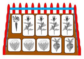Veg-garden-game.pdf