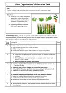 Plant-organisation-task.doc
