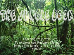 Lesson-8-The-Jungle-Book.pptx