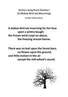 A-Widow-Bird.docx