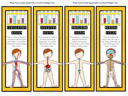 24 HUMAN BODY SYSTEMS Bookmarks