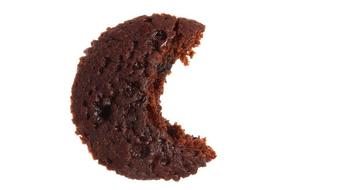 biscuit-photo.pdf