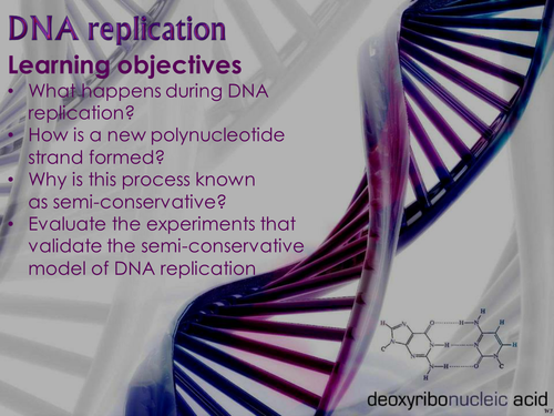 AQA AS & A-level Biology (2016 specification). Section 1 Topic 2: Nucleic acids. 2 DNA replication
