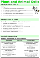 Animal-and-plant-cells-worksheet.ppt