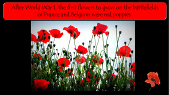 preview-images-armistice-day-poetry-and-interviews-with-veterans-8.pdf