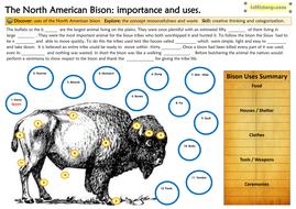 2.-Buffalo-worksheetws.pdf