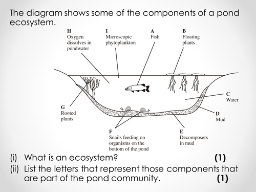 AQA A-level Biology (2016 specification). Section 7 Topic 19: Populations 3 Competition